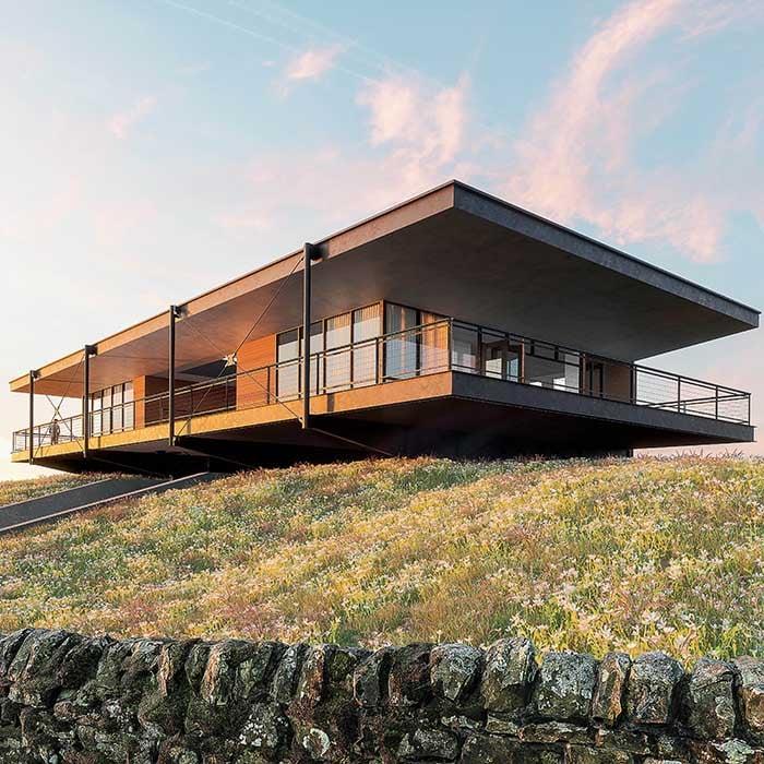 External render house grass wild