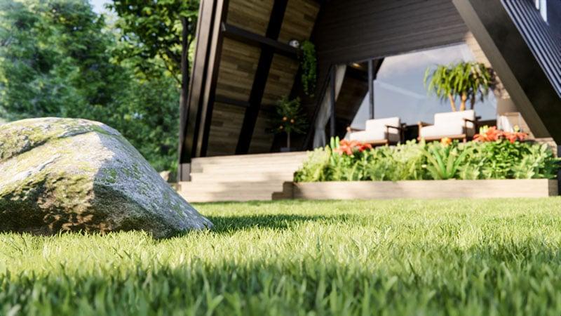 Grass in Enscape